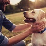 Cost of owning a pet. Budgeting for owning a pet